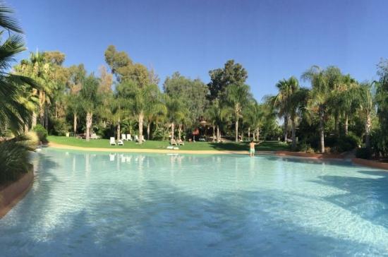 idées evjf marrakech - piscine dans un oasis marrakech