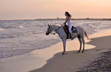 idées evjf marseille - balade à cheval marseille